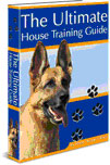 house training a dog
